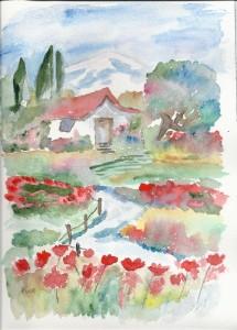 les coquelicots en aquarelle dans annuaire numerisation0001-49-215x300