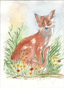 le renard en aquarelle dans annuaire renard-218x300