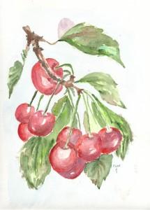 les cerises dans annuaire cerises0001-215x300